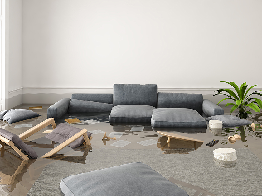 water damage fire damage mold removal riverside county